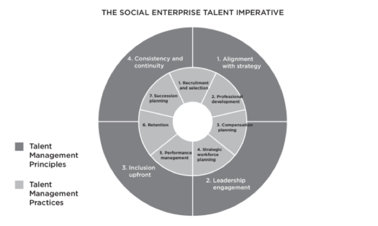 The Talent Imperative: A Grounded Theory Study on